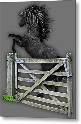 Horse Dreams Collection Metal Print by Marvin Blaine