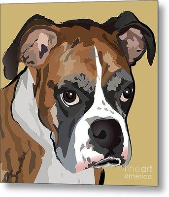 Boxer Dog Portrait Metal Print by Robyn Saunders