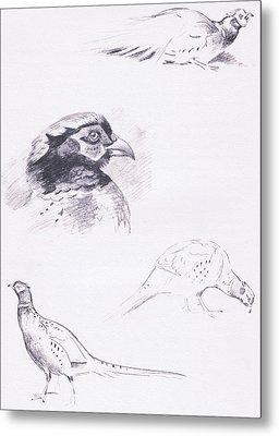 Pheasants Metal Print by Archibald Thorburn