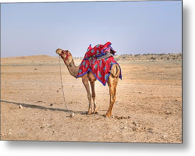 Thar Desert - India Metal Print by Joana Kruse