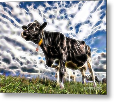 Cow Metal Print by Marvin Blaine