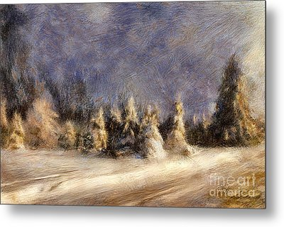 A Blizzard Of Light Metal Print by Lois Bryan