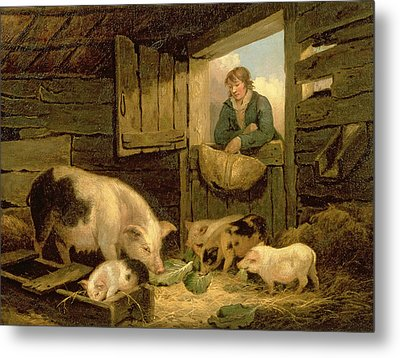 A Boy Looking Into A Pig Sty Metal Print by George Morland
