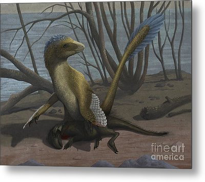 A Deinonychus Protects Its Kill Metal Print by Emily Willoughby