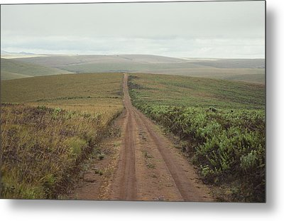 A Dirt Road Leading To The Horizon Metal Print by Bill Curtsinger