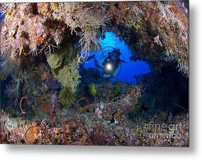 A Diver Peers Through A Coral Encrusted Metal Print by Steve Jones