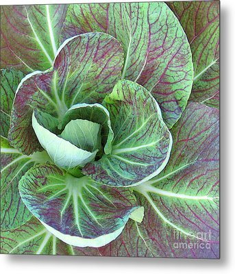 A Floral I Metal Print by Gary Everson