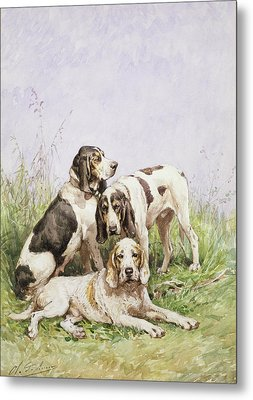 A Group Of French Hounds Metal Print by Charles Oliver de Penne