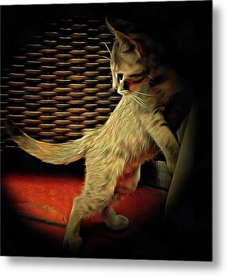 A Kitten Tail Metal Print by Dorothy Berry-Lound