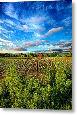 A Perfect Beginning Metal Print by Phil Koch