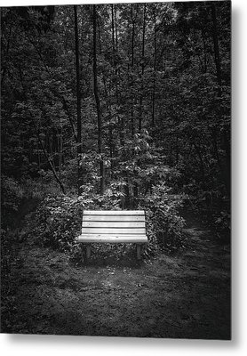 A Place To Sit Metal Print by Scott Norris