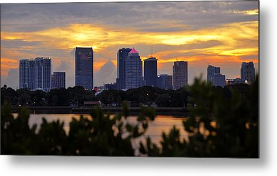 A Tampa Summer Evening Metal Print by David Lee Thompson
