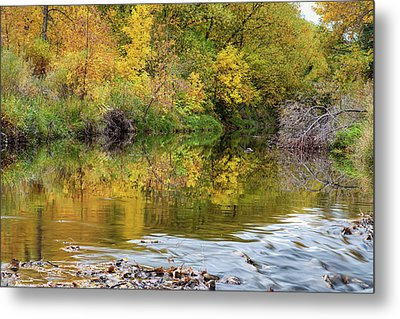 A Time For Reflections Metal Print by James BO Insogna