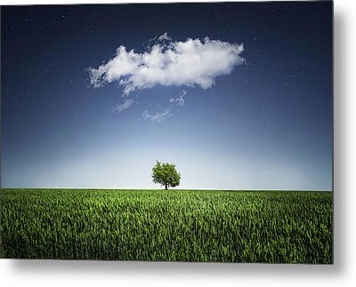 A Tree Covered With Cloud Metal Print by Bess Hamiti