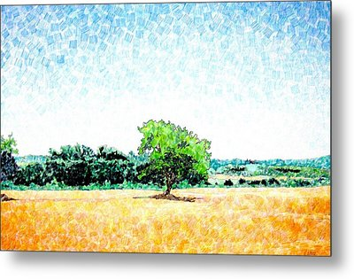 A Tree Near Siena Metal Print by Jason Charles Allen