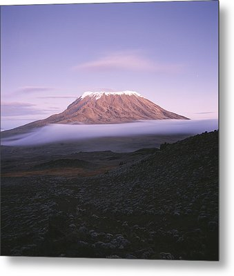 A View Of Snow-capped Mount Kilimanjaro Metal Print by David Pluth