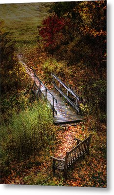 A Walk In The Park II Metal Print by Tom Mc Nemar
