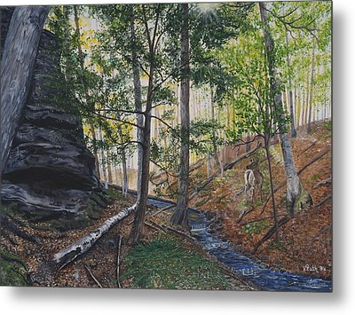 A Walk In The Woods Metal Print by Vicky Path