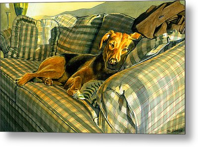 Abby Metal Print by Tom Hedderich