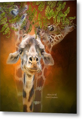 Above It All Metal Print by Carol Cavalaris