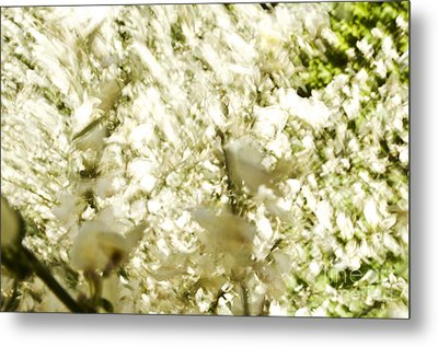 Abstract White Metal Print by Ray Laskowitz - Printscapes