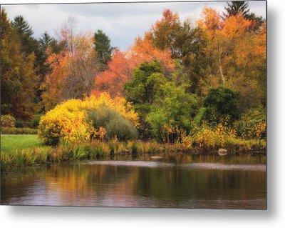 Across The Pond Metal Print by Tom Mc Nemar