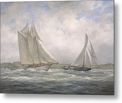 Aello Beta And Marigold Off The Isle Of Wight Metal Print by Richard Willis