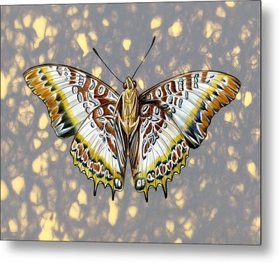 African Butterfly Metal Print by Mindy Lighthipe
