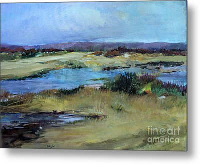 After The Rain Metal Print by Diane Ursin