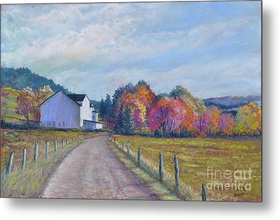 Almost Home Metal Print by Penny Neimiller
