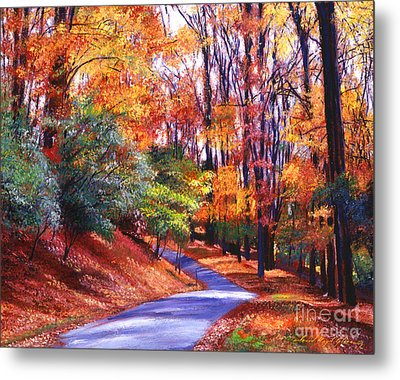 Along The Winding Road Metal Print by David Lloyd Glover