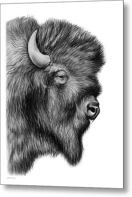 American Bison Metal Print by Greg Joens