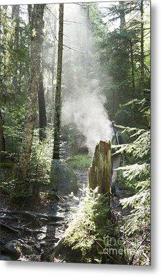 Ammonoosuc Ravine Trail - White Mountains New Hampshire Usa Metal Print by Erin Paul Donovan