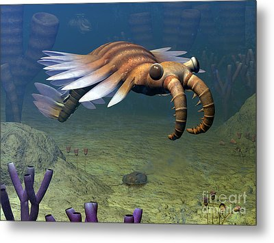 An Anomalocaris Explores A Middle Metal Print by Walter Myers