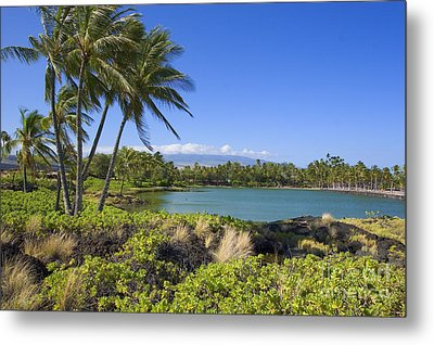 Anaehoomalu Bay Metal Print by Ron Dahlquist - Printscapes