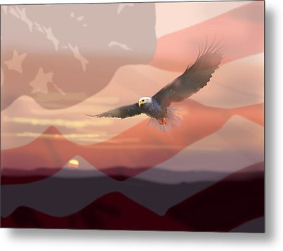 And The Eagle Flies Metal Print by Paul Sachtleben