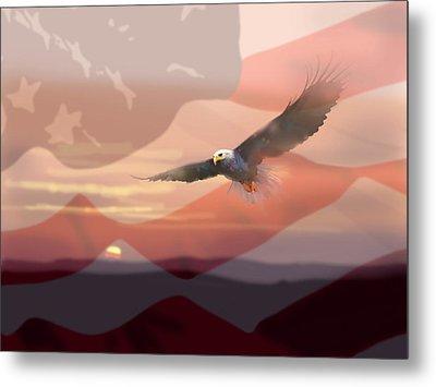 And The Eagle Flies Metal Print by Paul Sachtleben