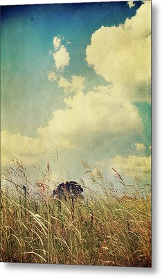 And The Livin's Easy Metal Print by Laurie Search