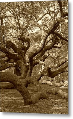 Angel Oak In Sepia Metal Print by Suzanne Gaff