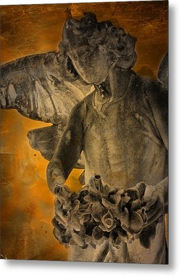 Angel Of Mercy Metal Print by Larry Marshall