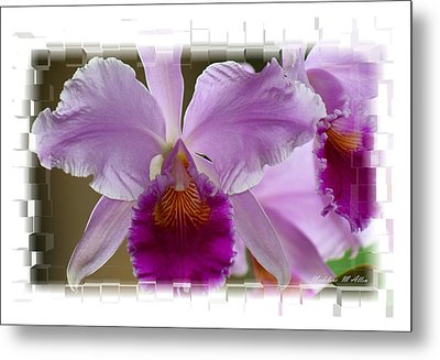 Angel Wings Orchid Metal Print by Madeline  Allen - SmudgeArt