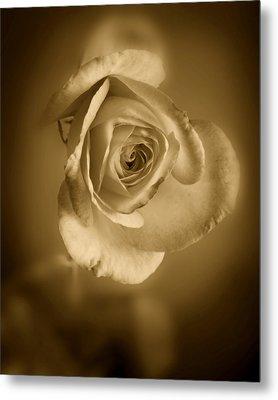 Antique Soft Rose Metal Print by M K  Miller