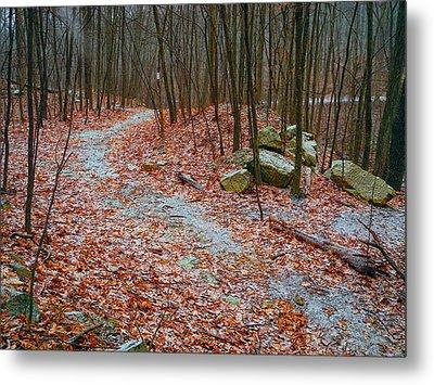 Appalachian Trail Heads Up Denning Hill In Ny Metal Print by Raymond Salani III