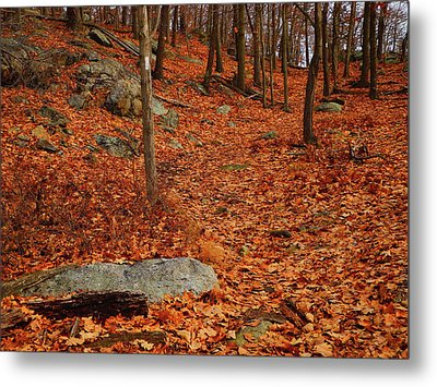 Appalachian Trail In Ny South Mountain Metal Print by Raymond Salani III