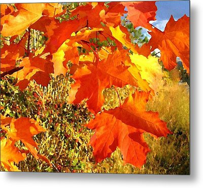 Applause For Autumn Metal Print by Will Borden