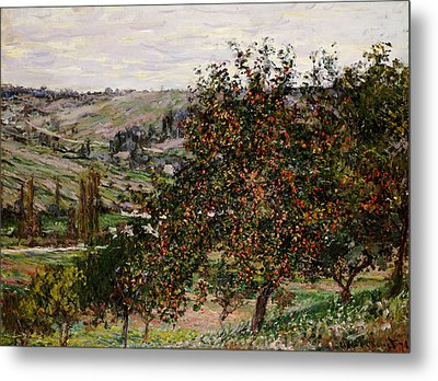 Apple Trees Near Vetheuil Metal Print by Claude Monet