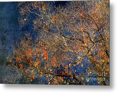 Approaching Winter Metal Print by Russ Brown