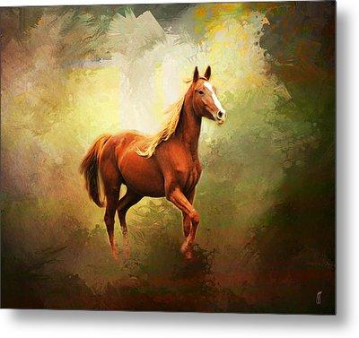 Arabian Horse Metal Print by Jai Johnson