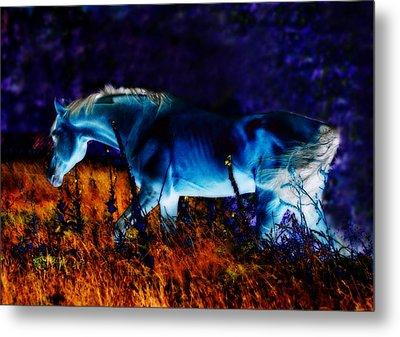 Arabian Stallion Metal Print by ELA-EquusArt