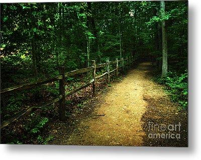 Arboretum Trail 2 Metal Print by Jeff McJunkin
